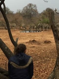 Horse Safari Africa Rachella 2.jpg